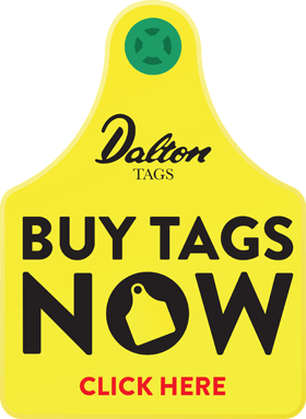 Buy Tags Now